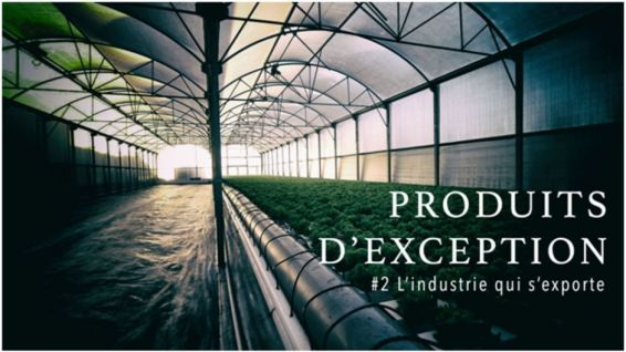 productions d'exception 2