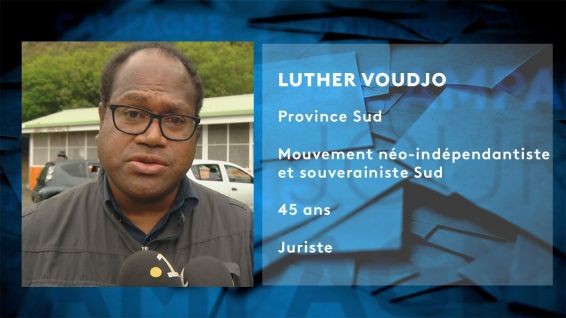 Fiche candidat Luther Voudjo