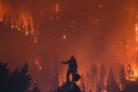 Californie : les incendies font 31 morts
