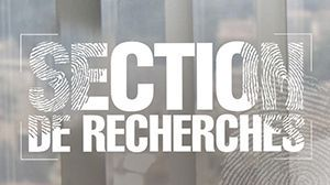 SectiondeRecherches_logo