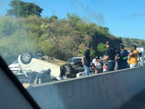 4 cabris causent des accidents