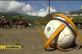 Horse-Ball : le plus collectif des sports équestres