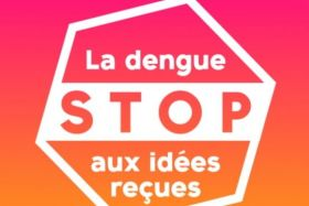 Campagne anti-dengue