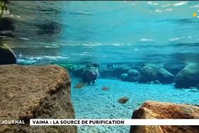 Vaima : la source de purification