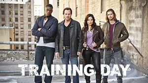 Training day_logo
