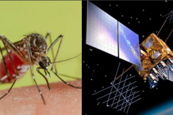 satellite dengue